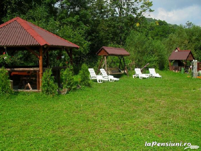 Vila Doina Branului - accommodation in  Rucar - Bran, Moeciu, Bran (06)