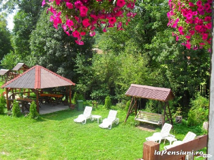 Vila Doina Branului - accommodation in  Rucar - Bran, Moeciu, Bran (07)