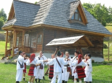 Casele de vacanta Luca si Vicentiu - accommodation in  Maramures Country (02)