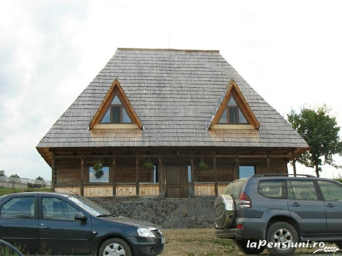 Casele de vacanta Luca si Vicentiu - accommodation in  Maramures Country (20)