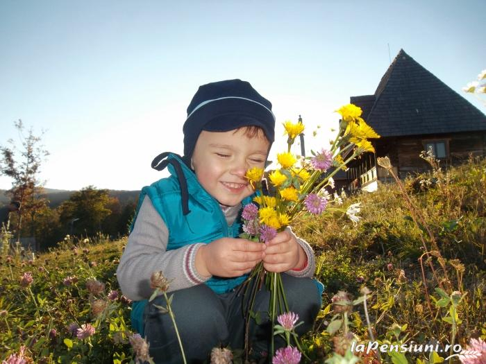 Casele de vacanta Luca si Vicentiu - accommodation in  Maramures Country (34)