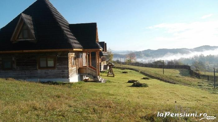 Casele de vacanta Luca si Vicentiu - accommodation in  Maramures Country (43)
