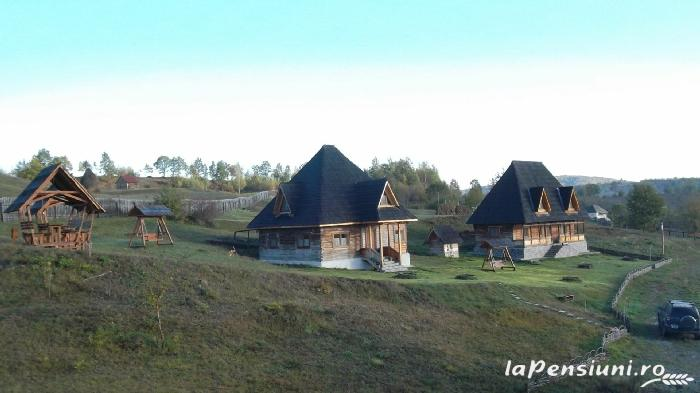 Casele de vacanta Luca si Vicentiu - accommodation in  Maramures Country (44)