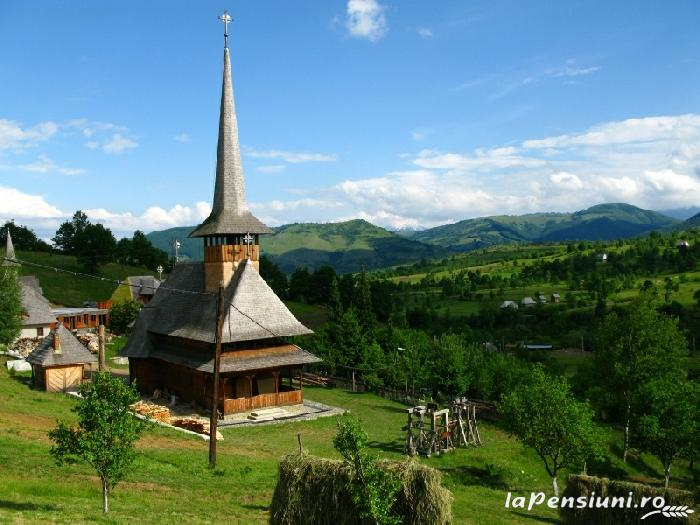 Casele de vacanta Luca si Vicentiu - accommodation in  Maramures Country (51)