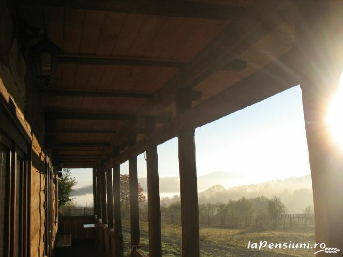 Casele de vacanta Luca si Vicentiu - accommodation in  Maramures Country (55)
