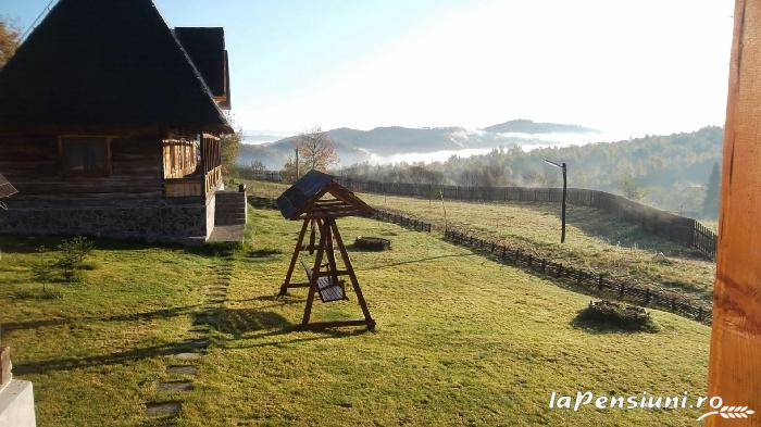 Casele de vacanta Luca si Vicentiu - accommodation in  Maramures Country (74)