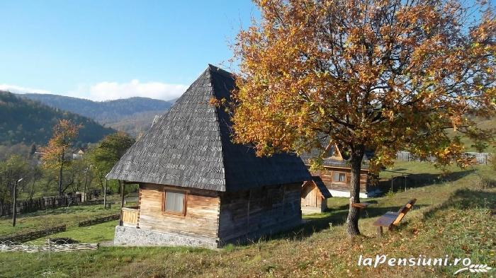 Casele de vacanta Luca si Vicentiu - accommodation in  Maramures Country (75)