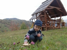 Casele de vacanta Luca si Vicentiu - accommodation in  Maramures Country (76)