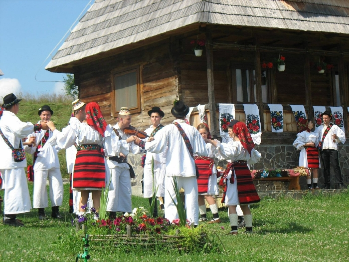 Casele de vacanta Luca si Vicentiu - accommodation in  Maramures Country (85)