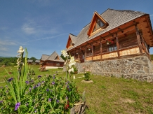 Casele de vacanta Luca si Vicentiu - accommodation in  Maramures Country (90)