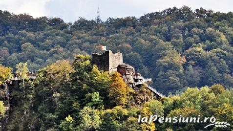 Pensiunea Iuliana - accommodation in  Fagaras and nearby, Transfagarasan (Surrounding)