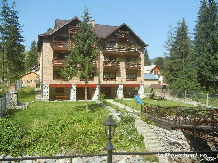 Casa de vis - accommodation in  Apuseni Mountains, Motilor Country, Arieseni (01)