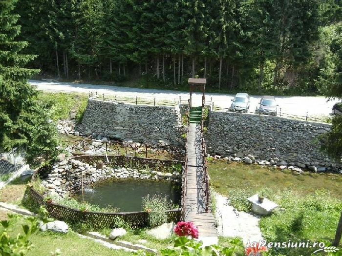 Casa de vis - accommodation in  Apuseni Mountains, Motilor Country, Arieseni (02)
