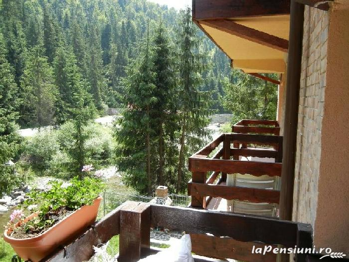 Casa de vis - accommodation in  Apuseni Mountains, Motilor Country, Arieseni (04)