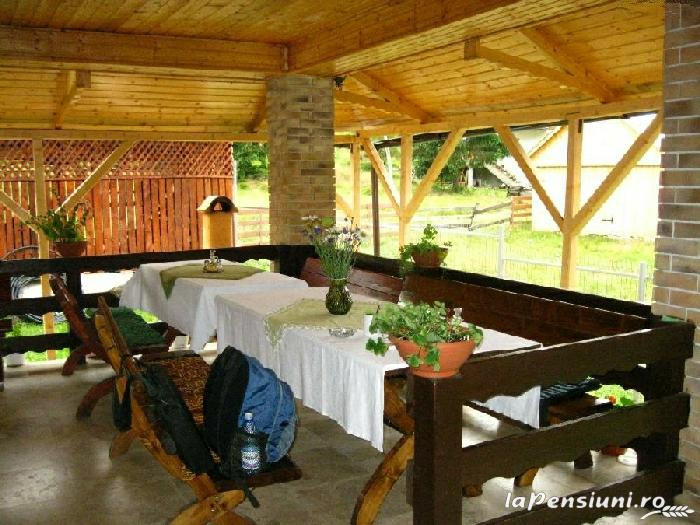 Casa de vis - accommodation in  Apuseni Mountains, Motilor Country, Arieseni (14)
