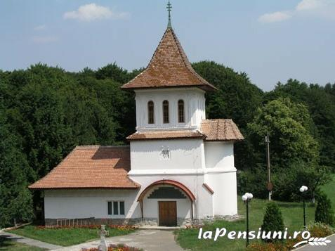 Pensiunea Miruna - accommodation in  Fagaras and nearby, Sambata (Surrounding)