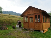 Pensiunea Aries - accommodation in  Apuseni Mountains, Motilor Country, Arieseni (02)