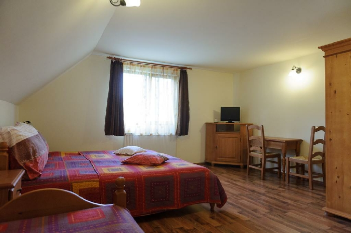 Pensiunea Aries - accommodation in  Apuseni Mountains, Motilor Country, Arieseni (04)