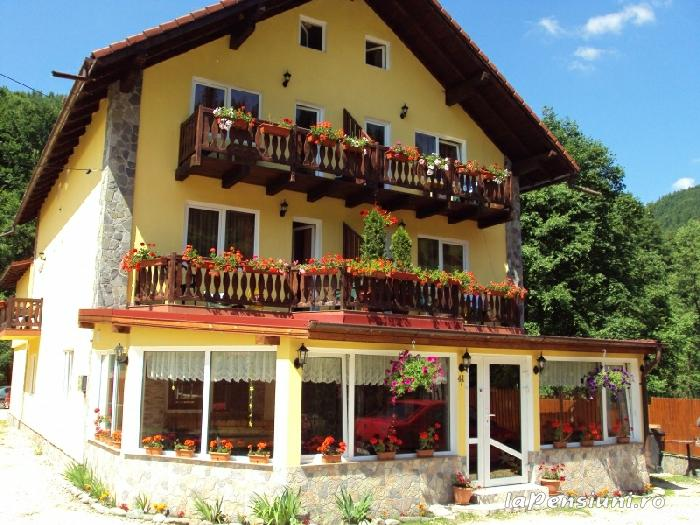 Pensiunea La Munte - accommodation in  Rucar - Bran, Moeciu (01)