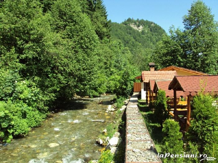 Pensiunea La Munte - accommodation in  Rucar - Bran, Moeciu (12)