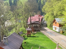Pensiunea Danciu - accommodation in  Motilor Country (03)