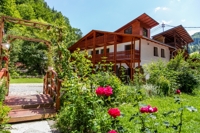 Pensiunea Danciu - accommodation in  Motilor Country (04)