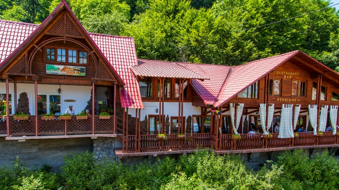 Pensiunea Danciu - accommodation in  Motilor Country (05)