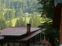 Pensiunea Danciu - accommodation in  Motilor Country (07)