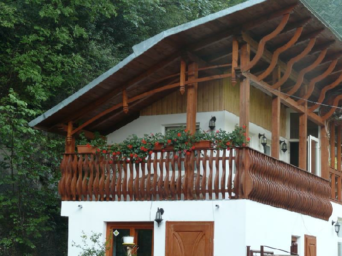 Pensiunea Danciu - accommodation in  Motilor Country (08)
