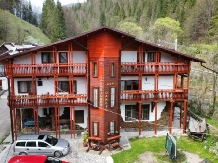 Pensiunea Danciu - accommodation in  Motilor Country (14)