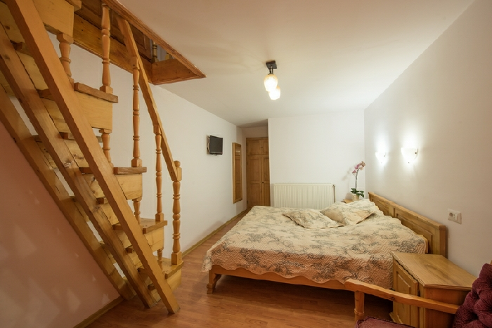 Pensiunea Danciu - accommodation in  Motilor Country (22)