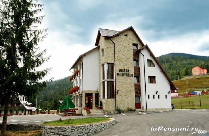 Pensiunea Vraja Muntelui - accommodation in  Apuseni Mountains, Motilor Country, Arieseni (03)