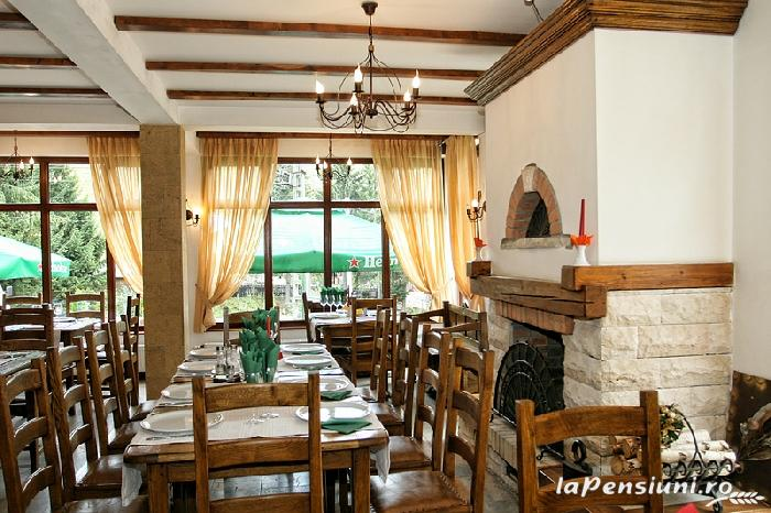 Pensiunea Vraja Muntelui - accommodation in  Apuseni Mountains, Motilor Country, Arieseni (21)