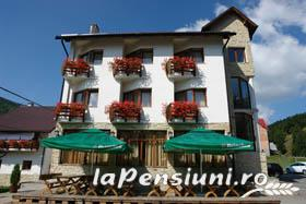 Pensiunea Vraja Muntelui - accommodation in  Apuseni Mountains, Motilor Country, Arieseni (25)