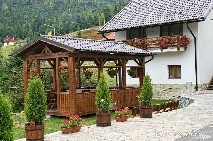 Pensiunea Vraja Muntelui - accommodation in  Apuseni Mountains, Motilor Country, Arieseni (28)