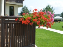Pensiunea Natura - accommodation in  Fagaras and nearby (06)