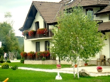 Pensiunea Natura - accommodation in  Fagaras and nearby (12)
