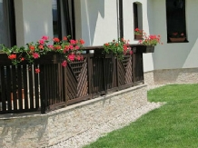 Pensiunea Natura - accommodation in  Fagaras and nearby (14)