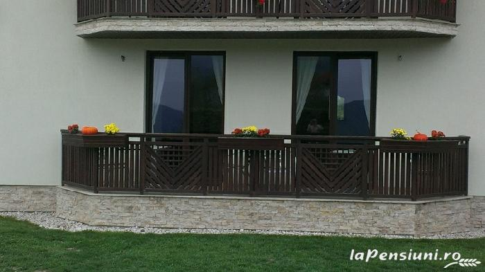 Pensiunea Natura - accommodation in  Fagaras and nearby (29)