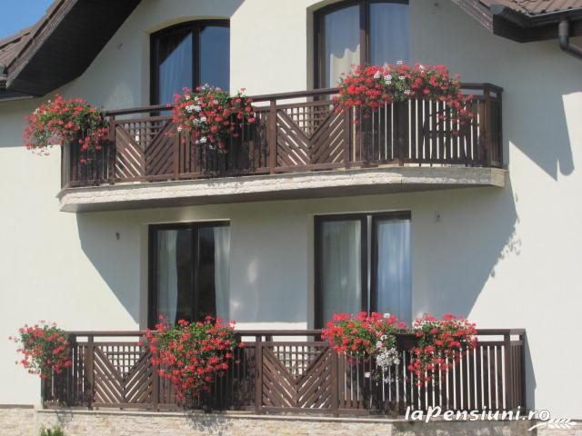 Pensiunea Natura - accommodation in  Fagaras and nearby (35)