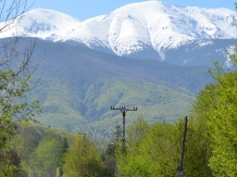 Pensiunea Natura - accommodation in  Fagaras and nearby (51)