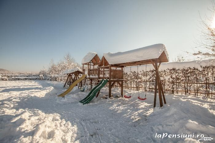 Pensiunea Natura - accommodation in  Fagaras and nearby (59)