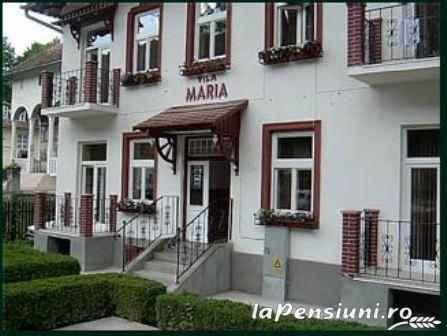 Vila Maria - accommodation in  Sovata - Praid (02)