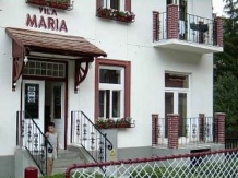 Vila Maria - accommodation in  Sovata - Praid (03)