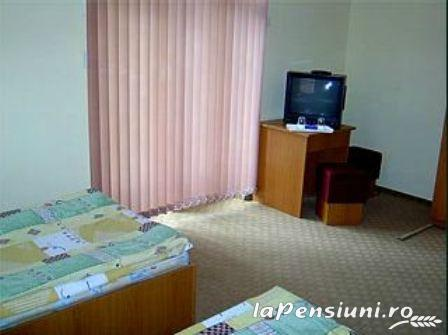 Vila Maria - accommodation in  Sovata - Praid (06)