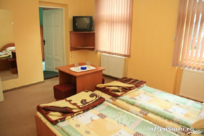 Vila Maria - accommodation in  Sovata - Praid (11)