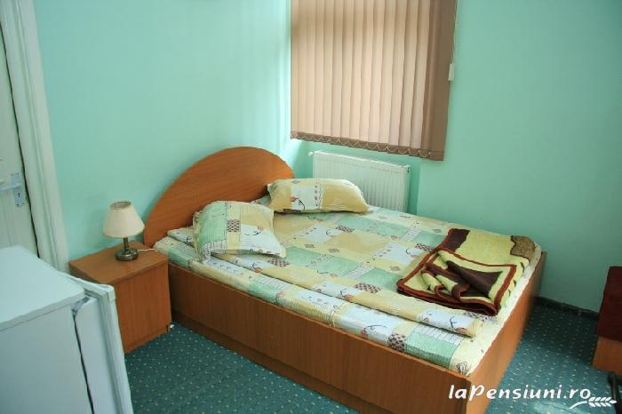 Vila Maria - accommodation in  Sovata - Praid (12)