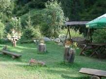 Pensiunea Onelia - accommodation in  Motilor Country (04)