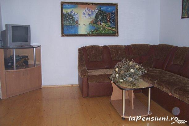 Pensiunea Ady - accommodation in  Motilor Country, Arieseni (15)