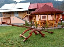 Pensiunea Ady - accommodation in  Motilor Country, Arieseni (19)